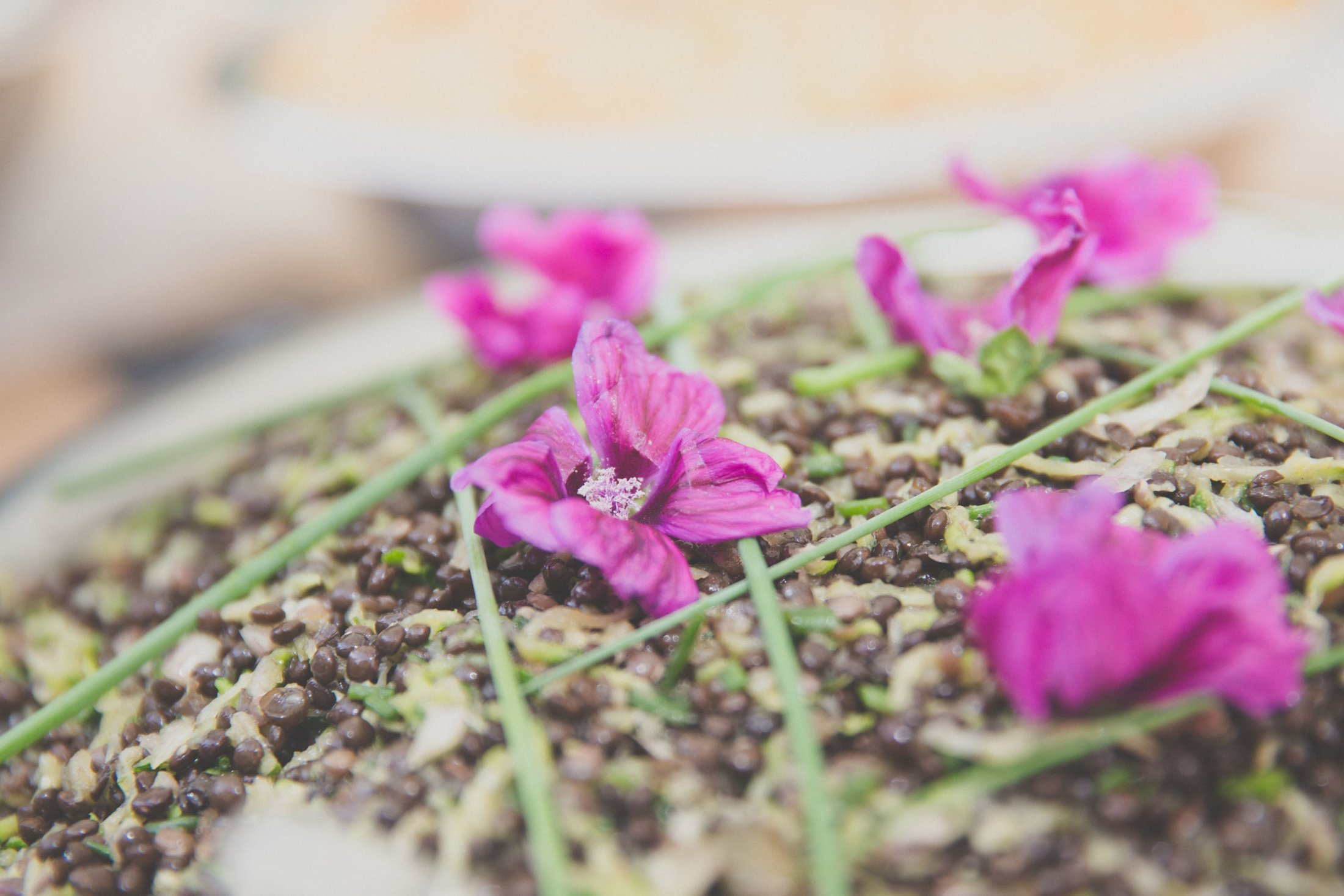 Traiteur_ethique-salade_lentilles_courgettes_fleur-mauve